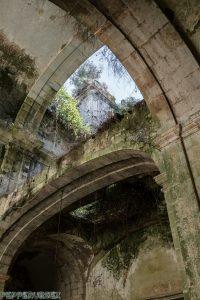 Mosteiro de Santa Maria de Seiça 1 van 1 11