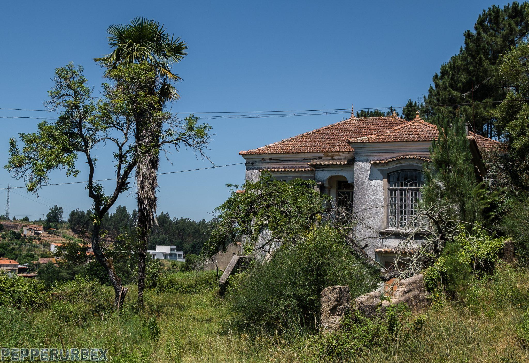 Villa Olivia 1 van 1 2