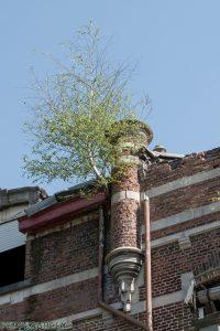 Chateau Lindenbosch 1 van 1 10