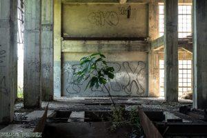 Factory Potpican 1 van 1 16